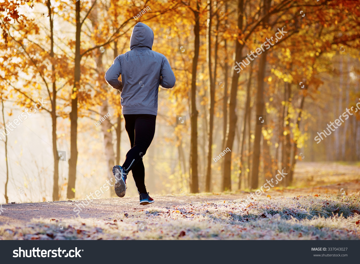 Fall Evening Wallpapers Young Man Running Park During Autumn Stock Photo 337043027
