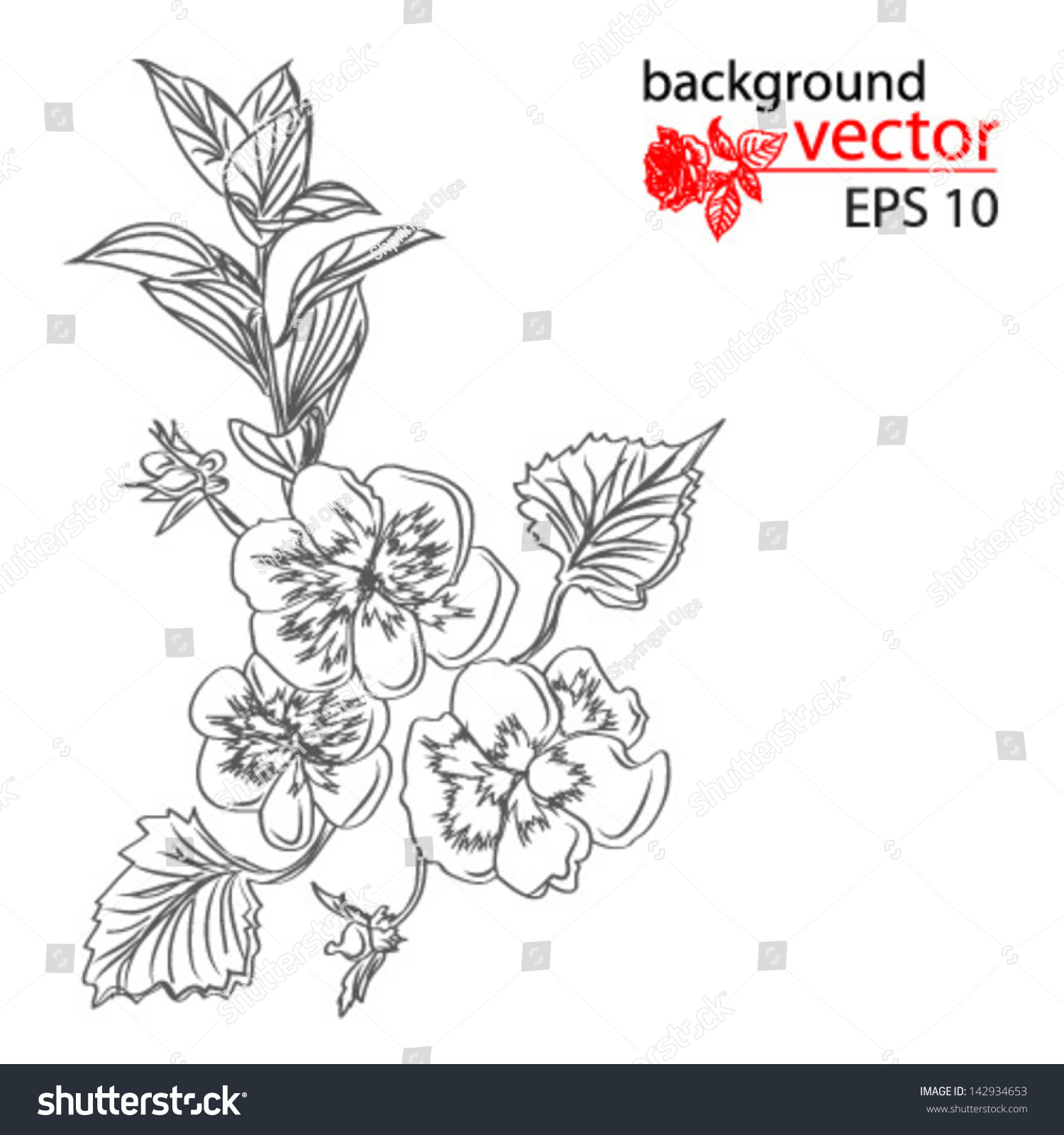 Spiegel Tattoo Black White Tattoo Sketch Bouquet Flower Stock Vector Royalty