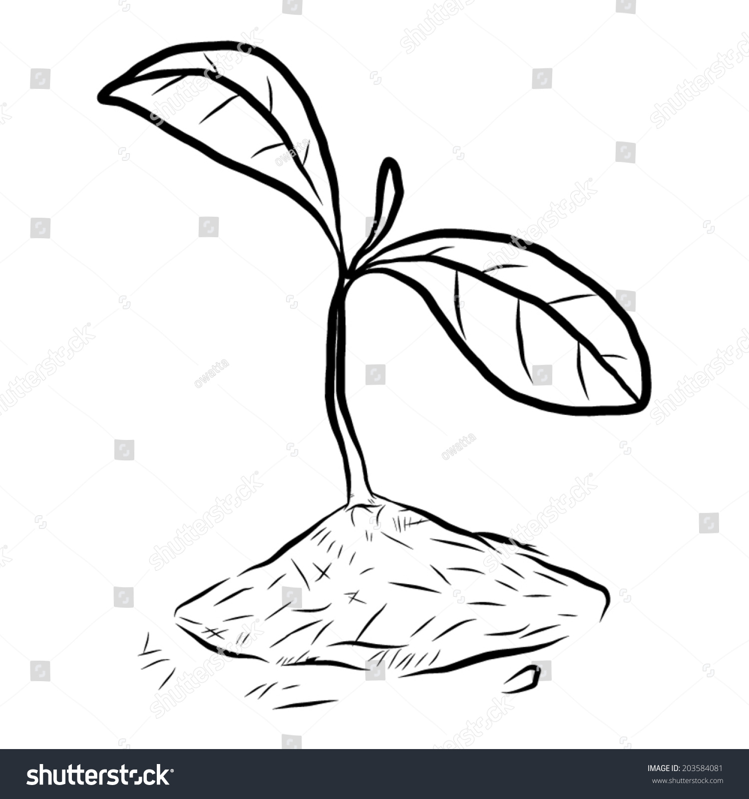 Growing Young Plant Form Soil Cartoon Stock Vector