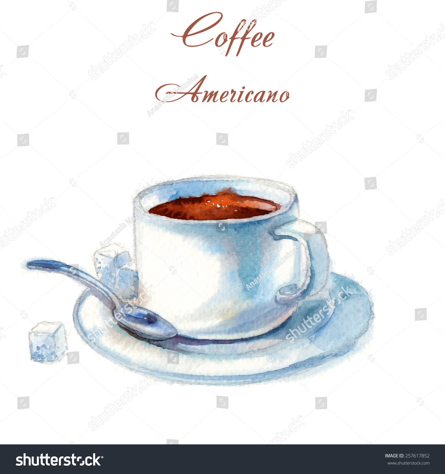 Americano Coffee English Hand Drawn Vector Watercolor Style Americano Coffee