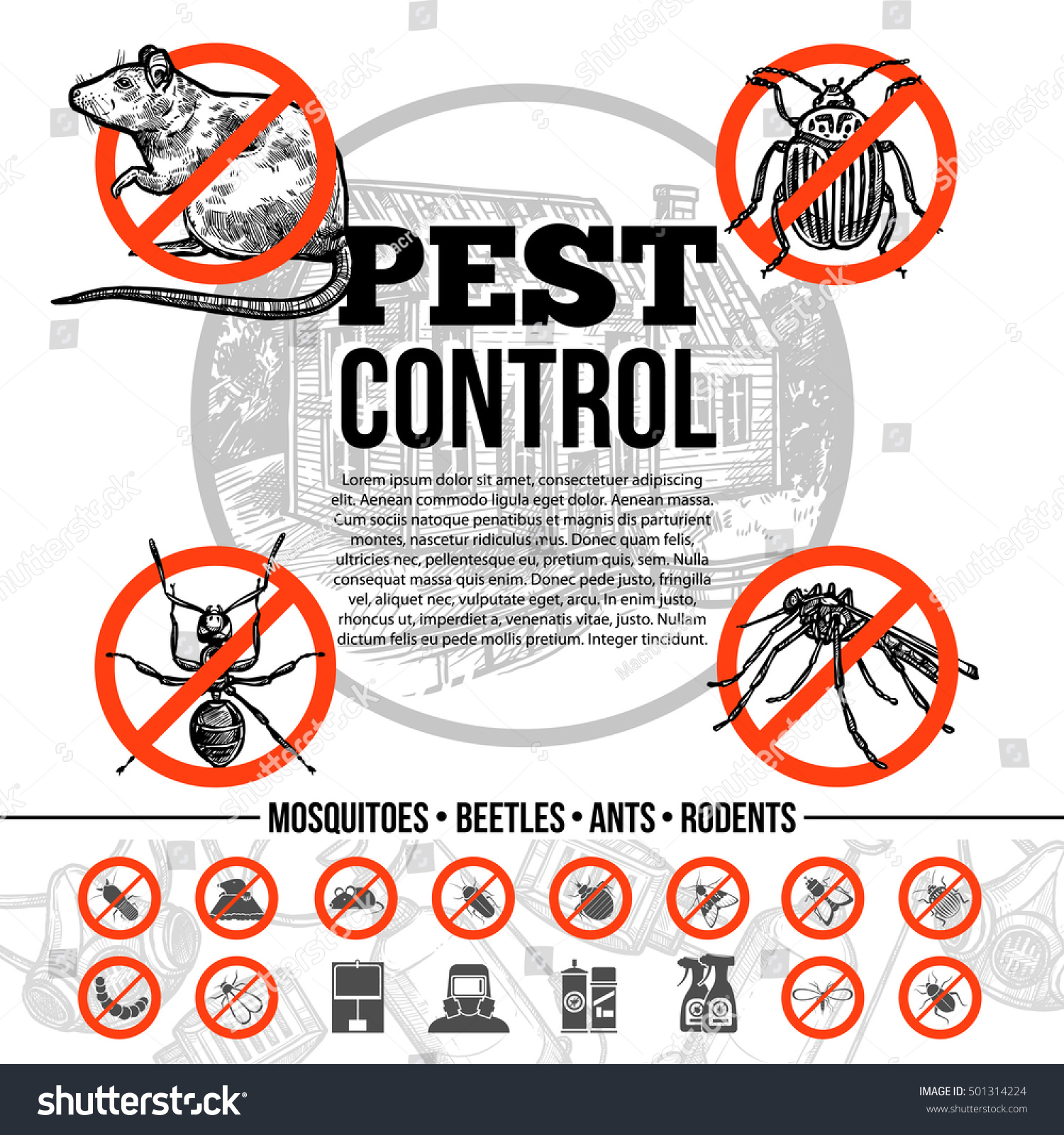 Ra T Vel Pest Control Infographics Icons Insects Rat Stock Vector Royalty