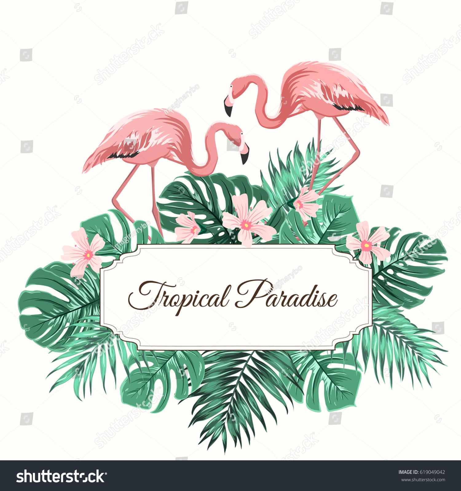 Tropical Border Frame Turquoise Leaves Flamingo Stock Auto For Diagram Wiring Box Cdi Iha6007 Paradise Composition Rectangular