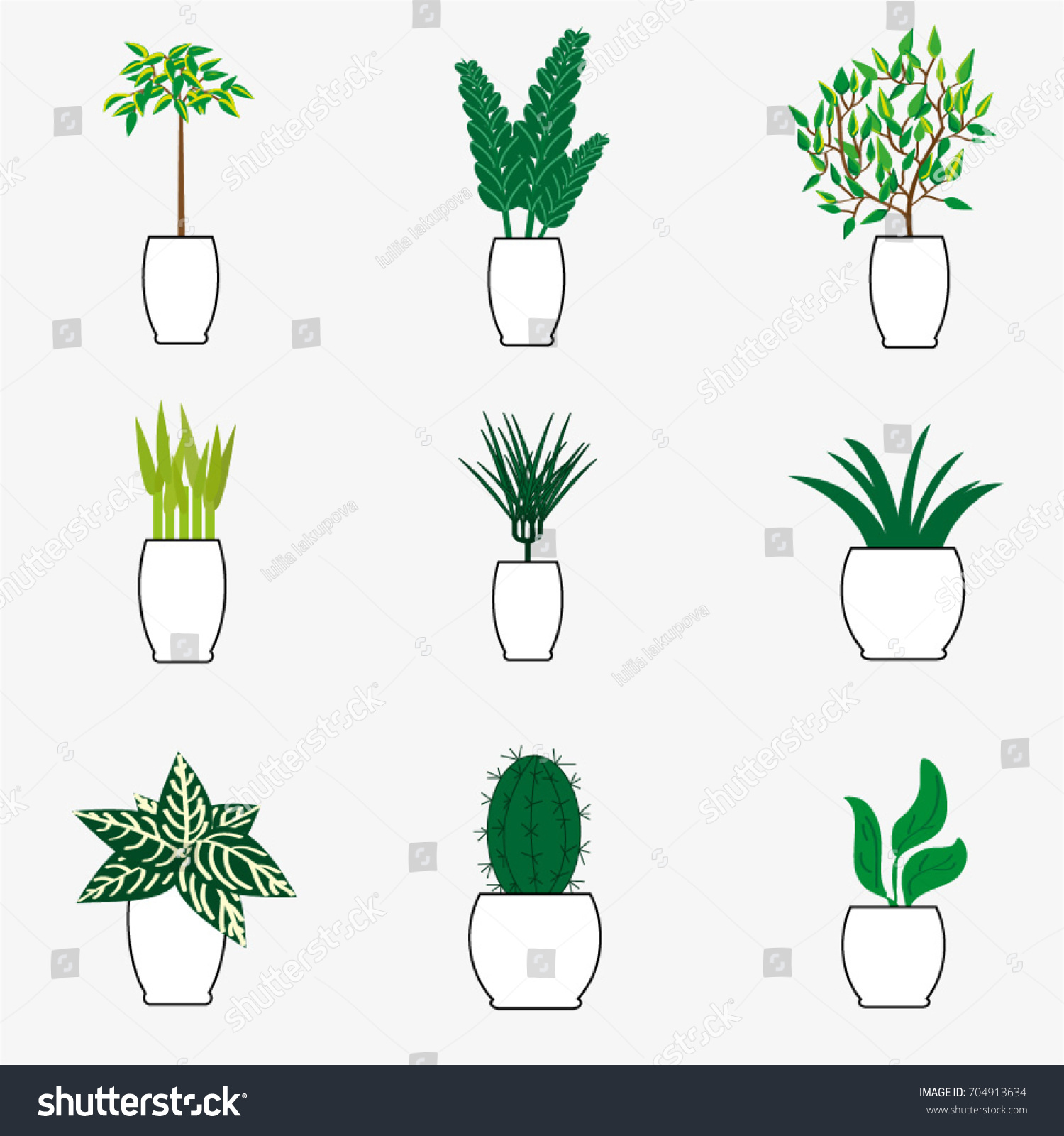 Indoor Plants For The Office Vector Collection Indoor Plants White Pot Stock Vector Royalty
