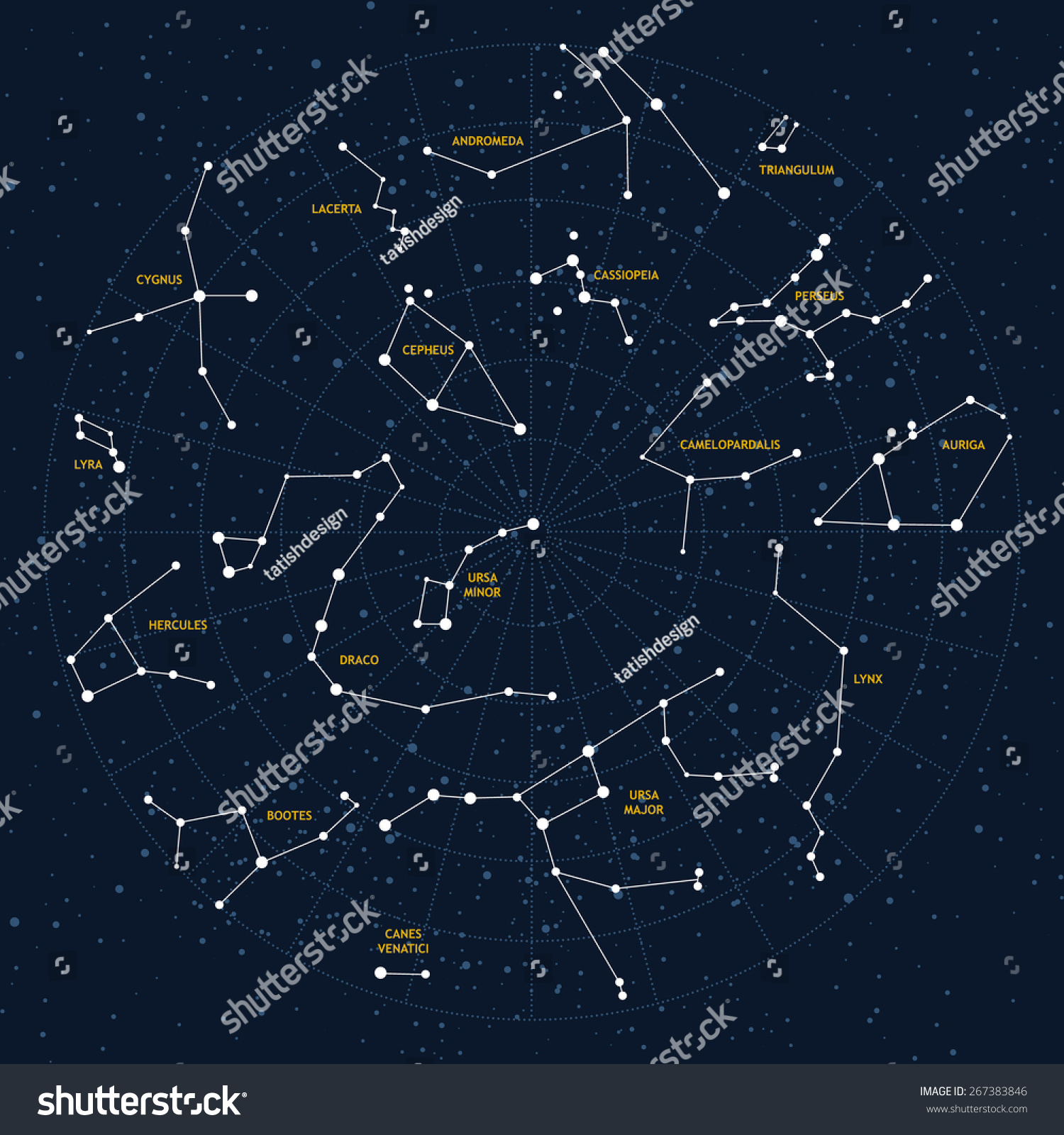 Fall Ceiling Wallpaper Download Vector Sky Map Constellations Stars Andromedalacerta Stock