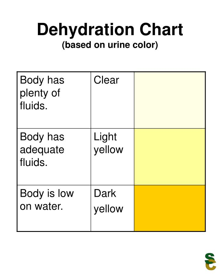 PPT - Dehydration Chart (based on urine color) PowerPoint - sample urine color chart