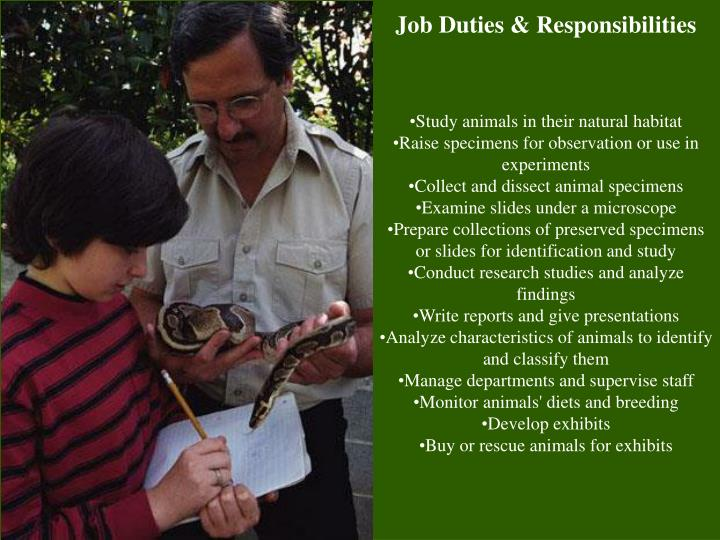 PPT - Zoologist PowerPoint Presentation - ID1173494
