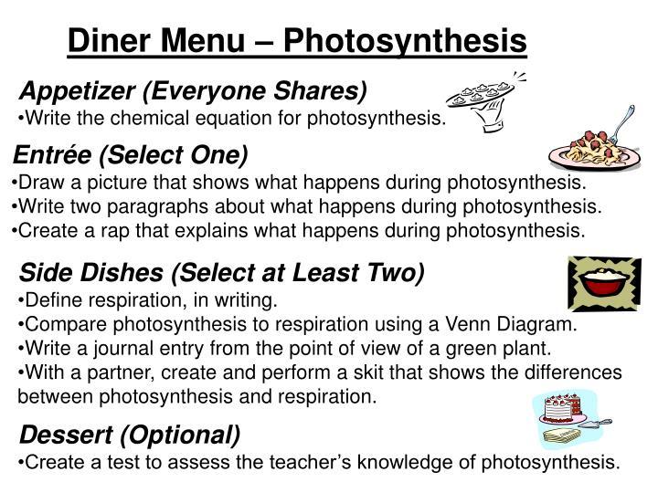 venn diagram photosynthesis and respiration