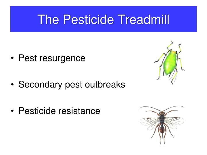 Pesticide Treadmill farmers in tech trap cotton cultivators are on