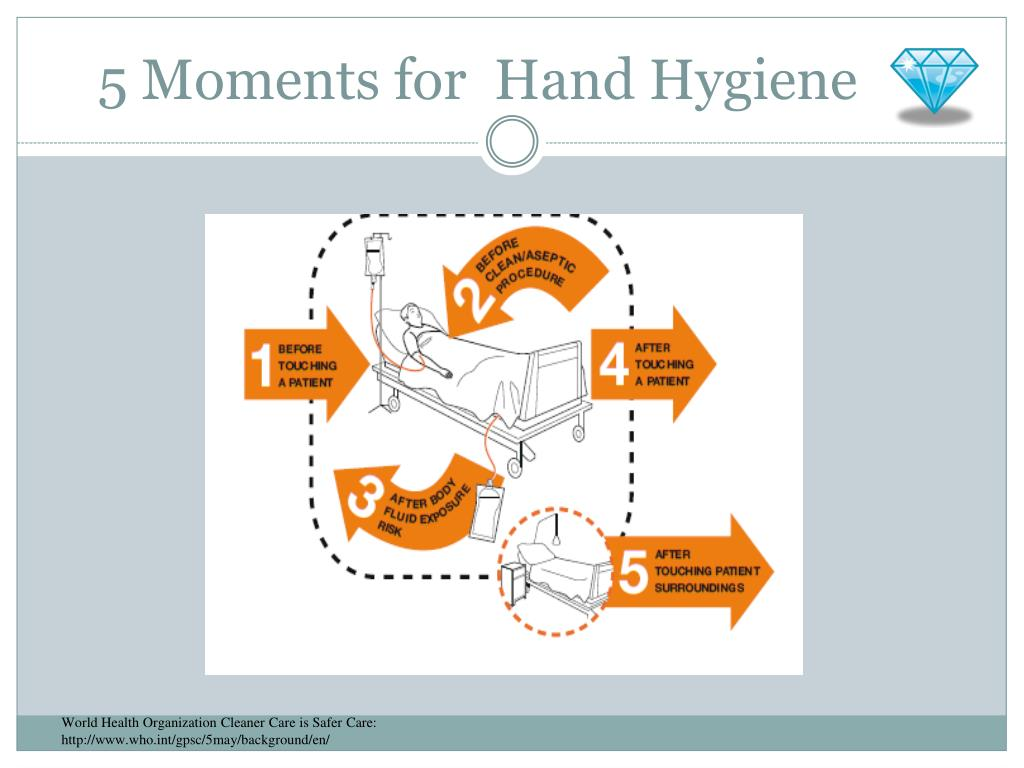 Literature Review 5 Moment Hand Hygiene