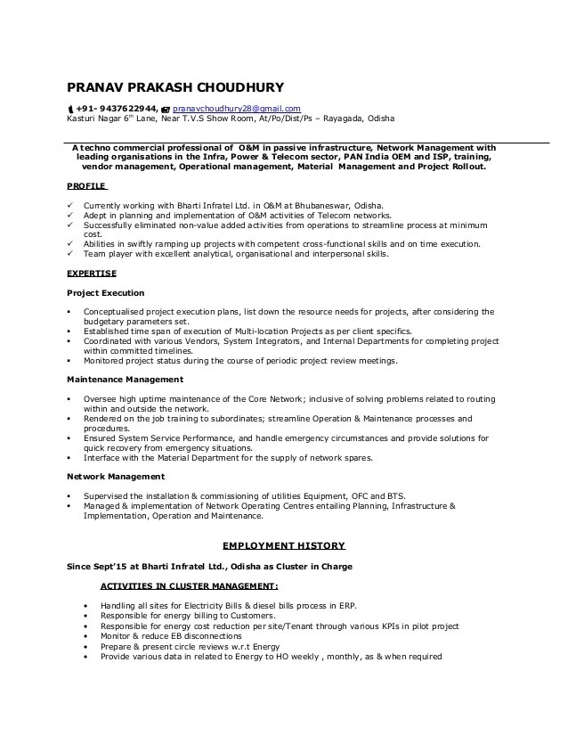 ppc resume sample