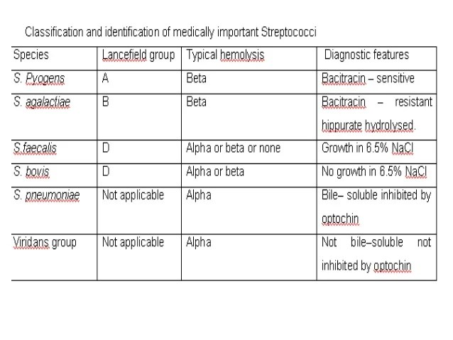 Staphylococcus And Streptococcus