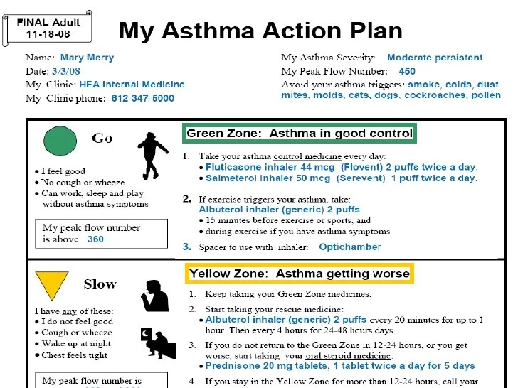 asthma action plan example - Boatjeremyeaton - asthma action plan