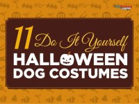 11 Creative DIY Dog Costumes You Can Make In Time For ...