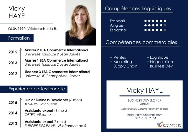 cv commerce international competences