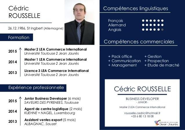 competences linguistiques techniques cv