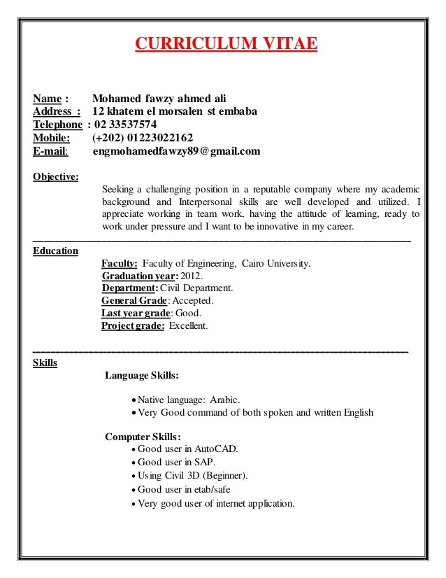 Curriculum Vitae By English Village   Professional resumes sample ...