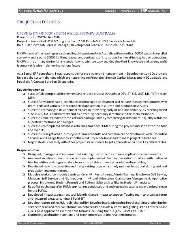 erp consultant resume sample
