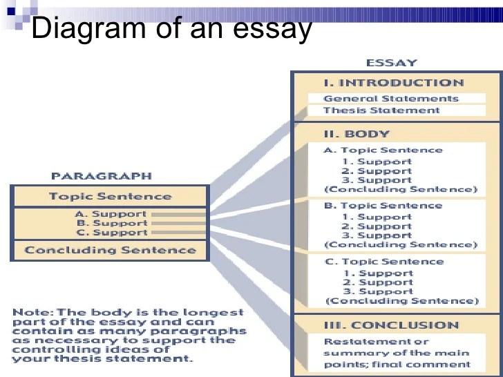 essay book structure