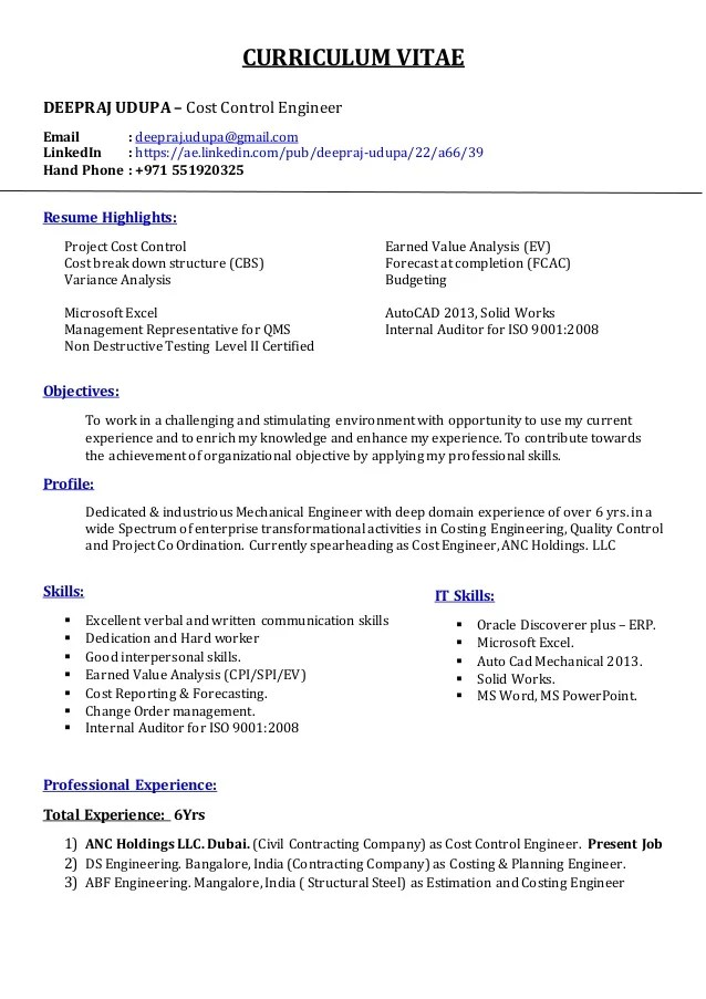 professional resume service cost