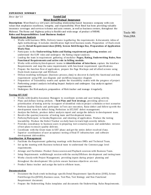Business Analyst Resume Doc - Ozilalmanoof