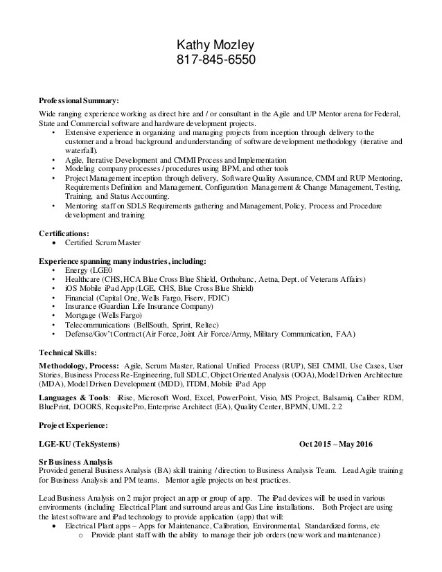 resume mentor experience