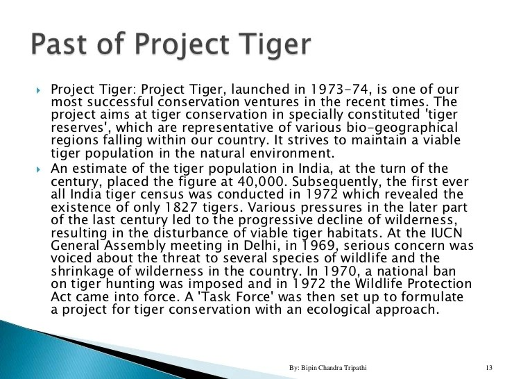 Tiger Project For High School Students
