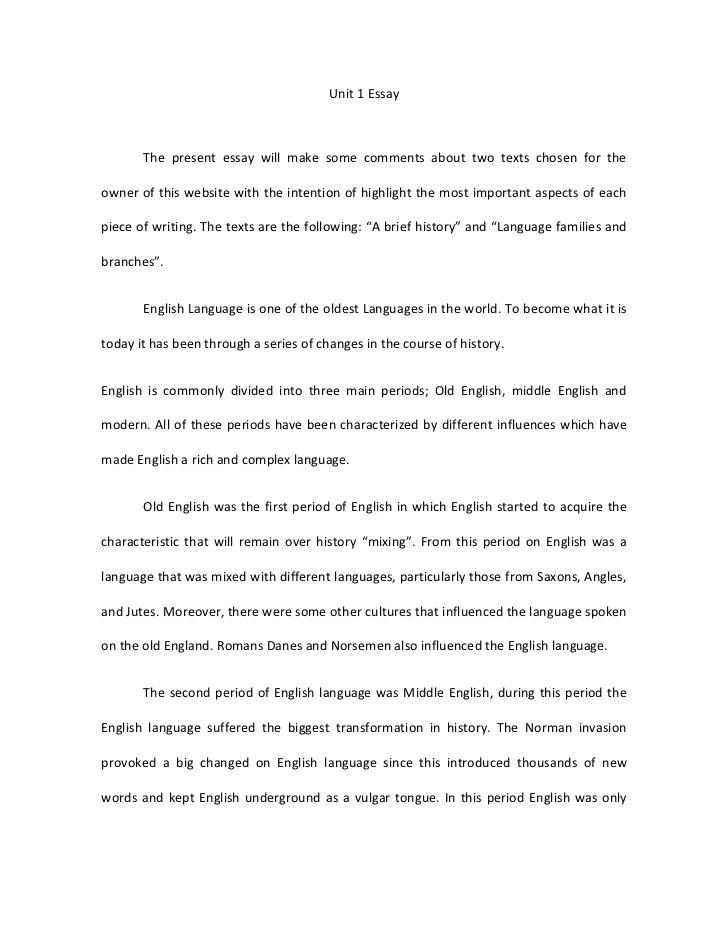 Diagnostic Essay Rubric Template - Homework For You