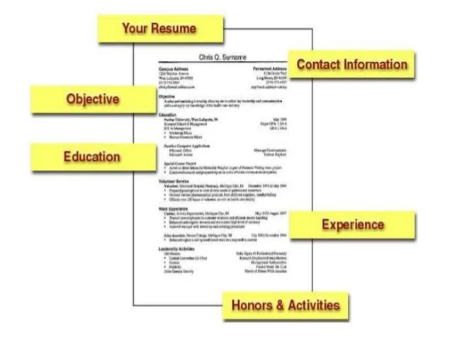 resume writing rules - Funfpandroid - resume writing