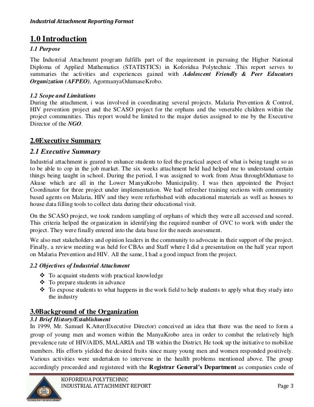 Project Summary Report Sample project overview template - project summary report sample