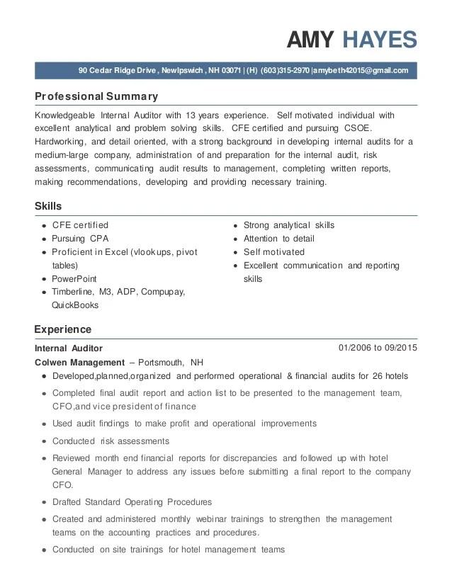 resume summary auditor
