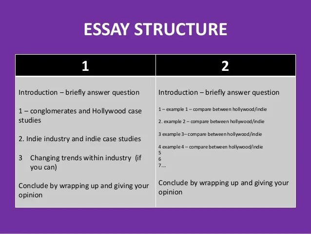 essay introduction example