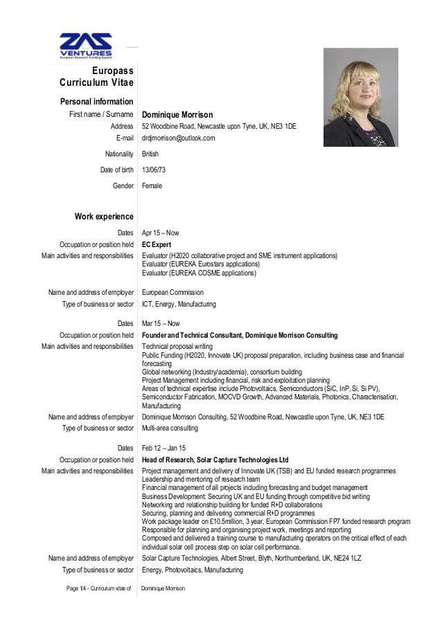 format cv consultant