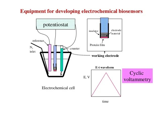Reference Electrode Reference Electrode Wikipedia Biosensors