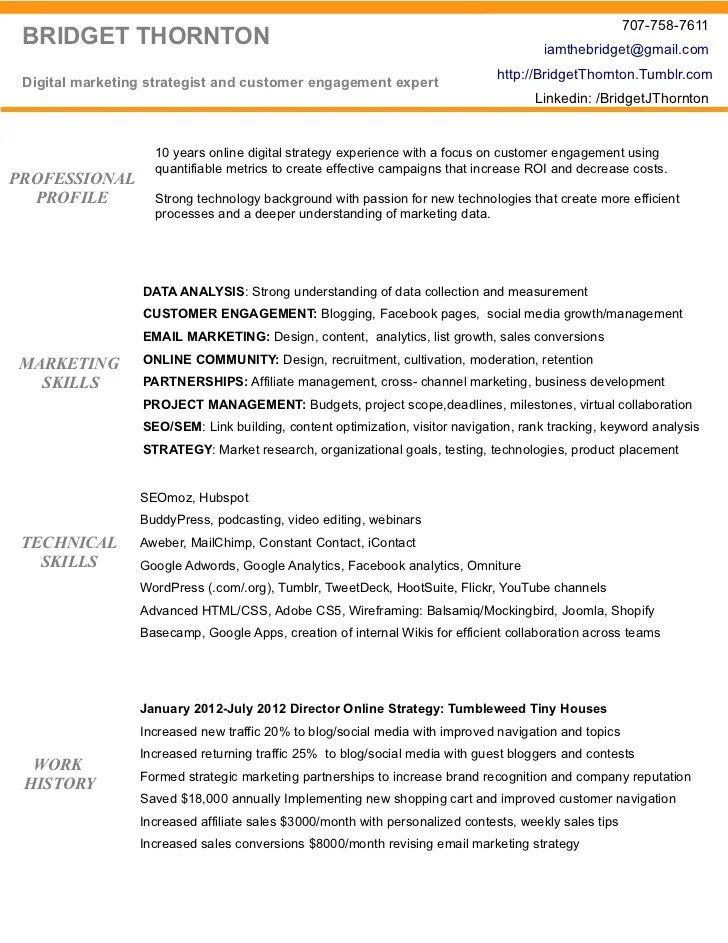 seo manager resume sample - Digital Strategist Resume