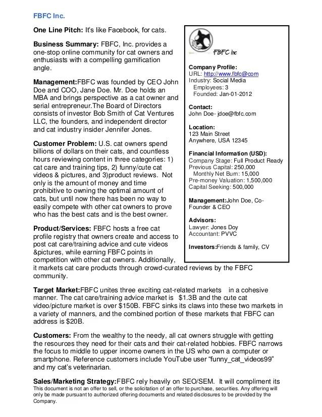 example of a resume executive summary - Resume Executive Summary