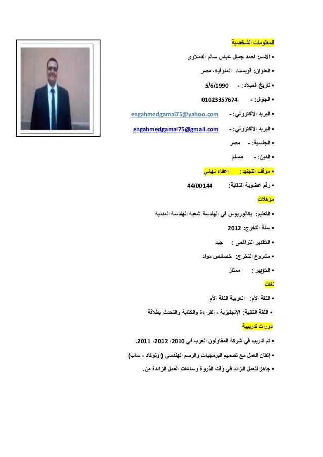 arabic cv template