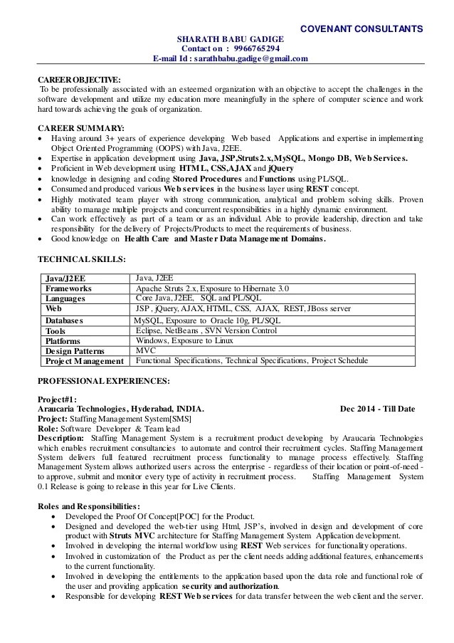 sample resume for technical lead - Kenicandlecomfortzone