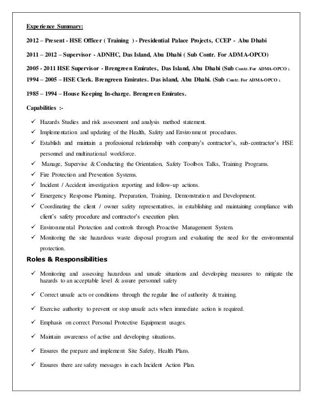 hse professional resume summary