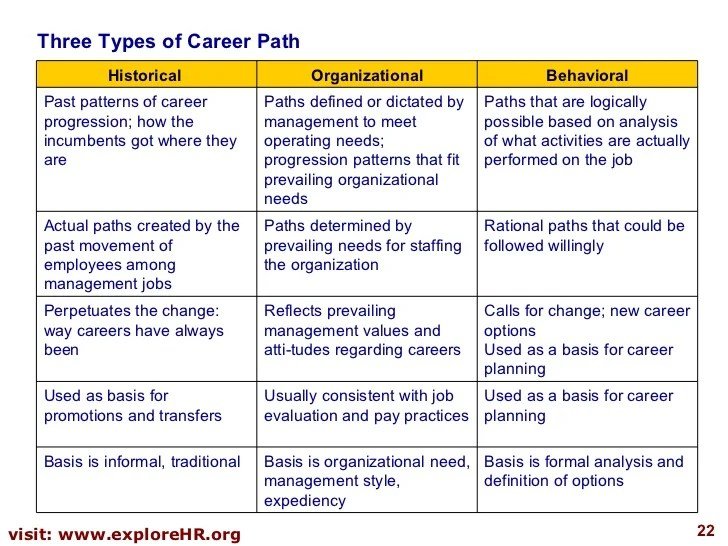 developing a career plan - Onwebioinnovate - planning a career path