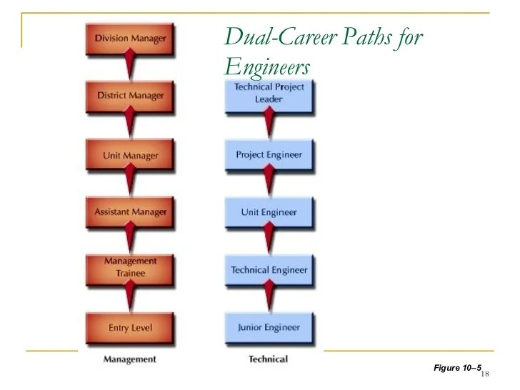 career path planning - Onwebioinnovate - planning a career path