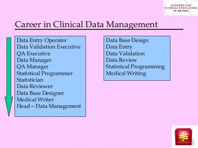 job description data manager - Thevillas