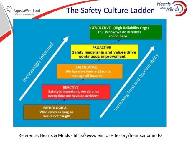 Maturity Ladder Veterinariancolleges