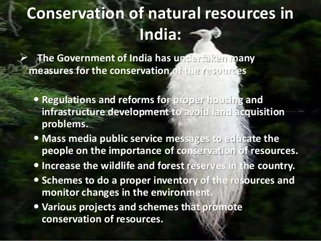 Essay on conservation of natural resources