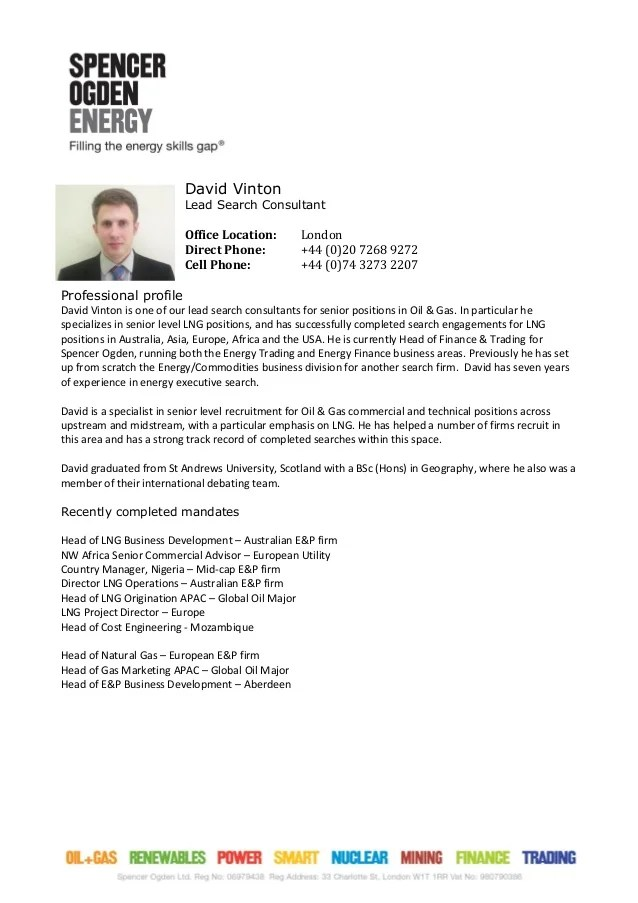 Careerperfectr Resume Writing Help Sample Resumes Consultant Profile Dave Vinton