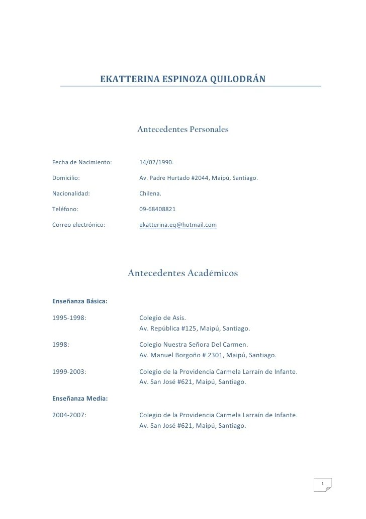 descargar cv pdf