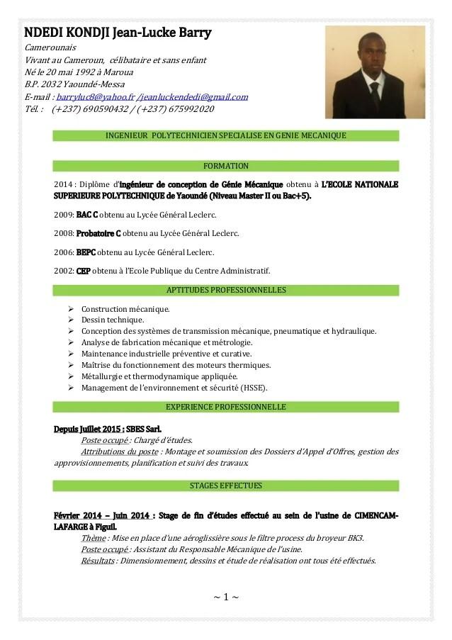 cv model francais algerie