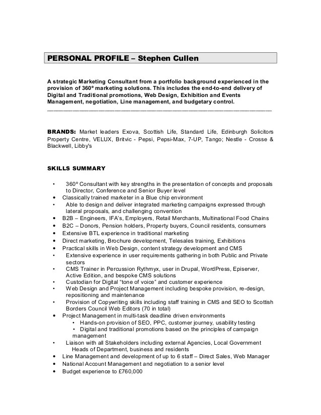 Consultant Resume Summary Statement Examples  Resume Builder Reviews