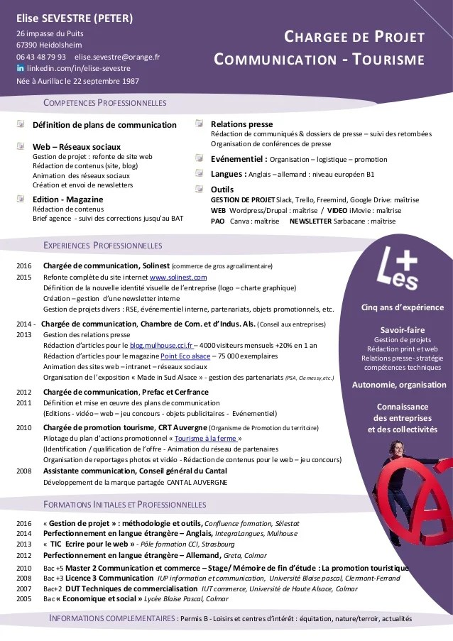 exemple cv chargee de communication web