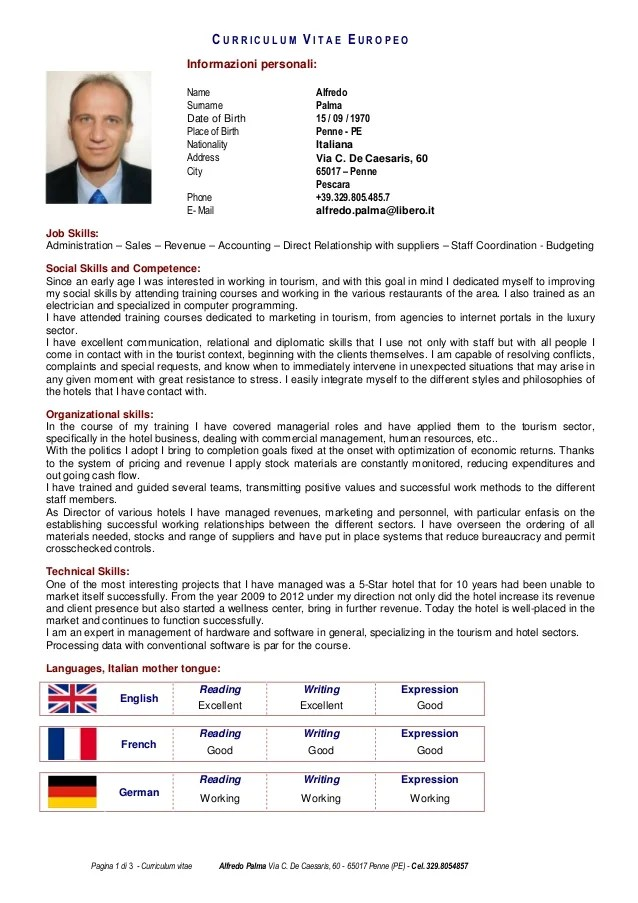 sample cv english