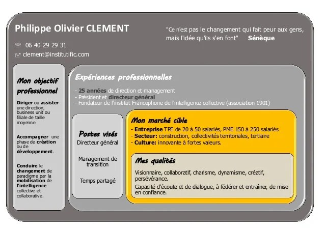 exemple cv manager de transition